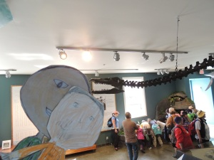 The Flat Mark Twins meet the Elasmosaur at Courtenay Museum.