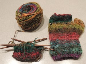 Happy fingerless glove in Noro Mossa yarn, courtesy Pages and Stitches in Amherst, NS. Assistance on the first glove by my sister. Second project on DPNs.