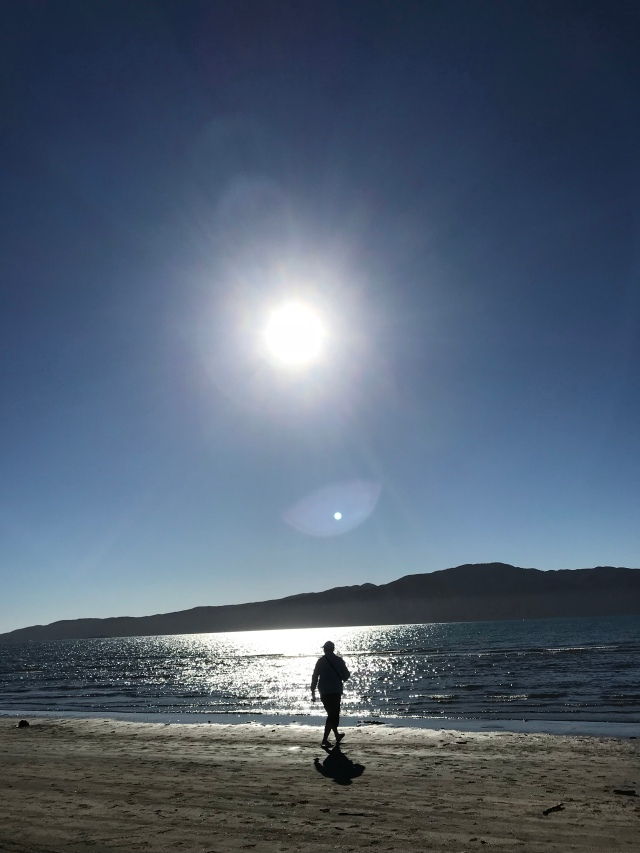 Mom (Judy Quinn) beachcombing along the water line on North Paraparaumu Beach.